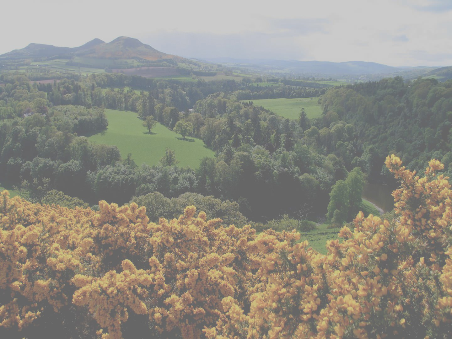 Vacation Rentals Scotland - Search for Properties